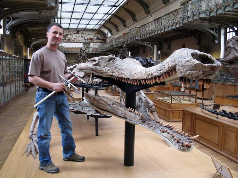 bigcroc.jpg-Amazing Facts About The Largest Living Reptiles You Need To Know (crocodile)
