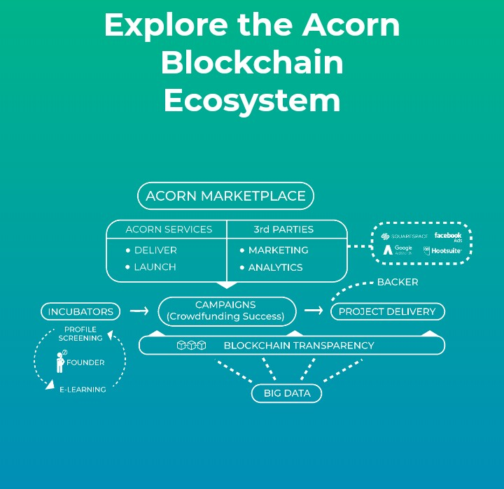 IMG_20180512_165234_807.JPG-Acorn Collective: The Next Generation Crowdfunding